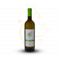 "Pinot Grigio IGT Colline Pescaresi Biologico ""6 Bio"""